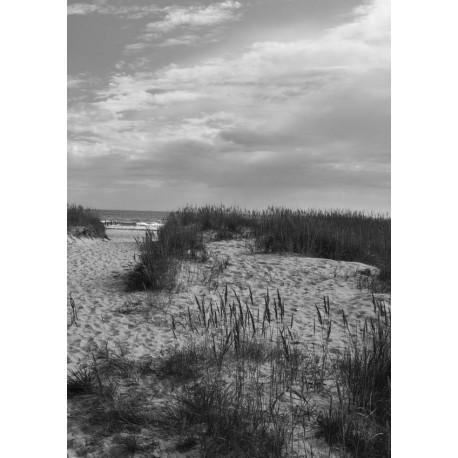 Svartvit fotokonst på Österlen. Tavlor och prints i svart och vitt