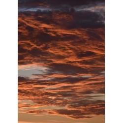 Fototavla av färgsprakande himmel över Österlen - Spoca