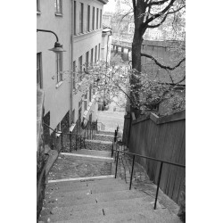Svartvit Stockholm stairs poster | Tavla i svart och vitt - Spoca