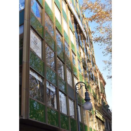 Green house poster. Fotokonst från Mallorca - Spoca