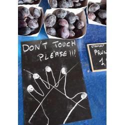Fototavla av frukt i Nice. Fotokonst till köket i mix med fler kökstavlor