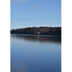 Tavla i blått med hus vid sjö. Tavlor och prints med naturmotiv