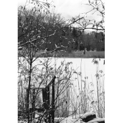 Tavla / poster med vinterlandskap. Svartvita affischer