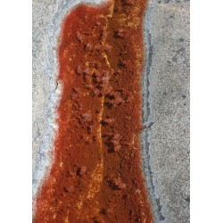Rusty water poster. Fin färg till moderna hem - Spoca