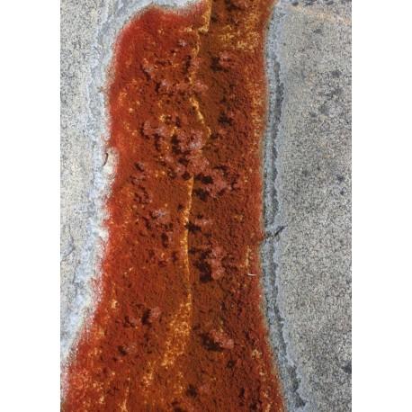 Rusty water poster. Fotokonst från Öregrund