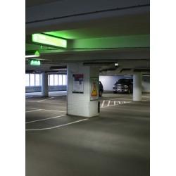 Tavla, poster Grönt ljus i garage. Marmorhallarna