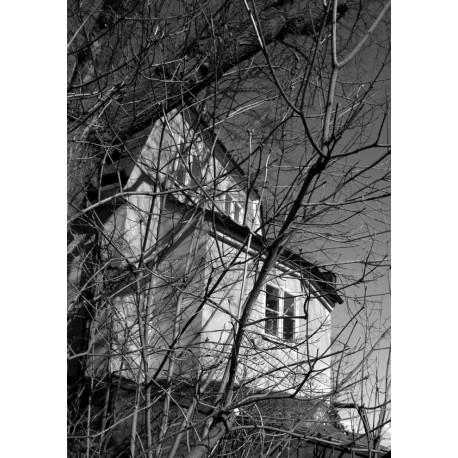 Svartvit poster med hus bakom träd. Foto, Stockholms motiv