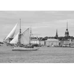 Stockholm och Gamla stan. Fin svartvit tavla