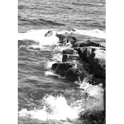 The foam of the water Poster. Vacker fotokonst till hemmet