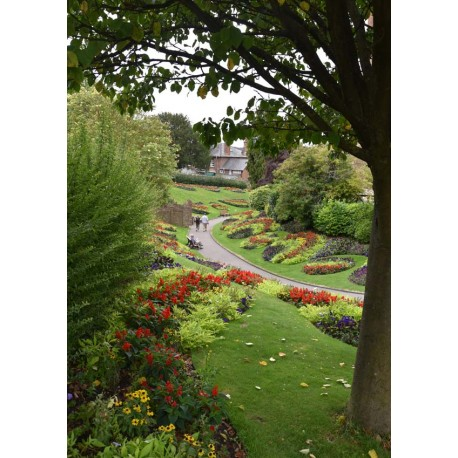 Beautiful garden Poster. Fotoposter - naturmotiv - Spoca